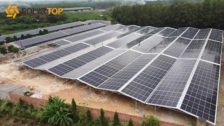 Dự án điện mặt trời áp mái tại trại lợn Trần Bá Lợi - Đồng Nai